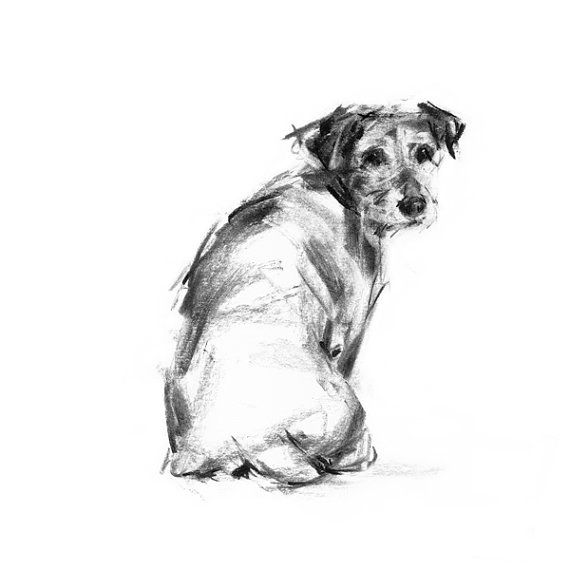 Terrier drawing print, Jack Russell Terrier dog sketch – dog art print – gift terrier lover, terrier print