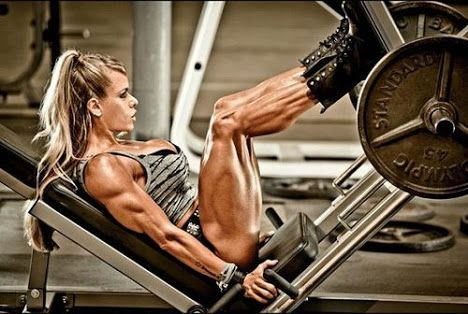Leg Press Workout Foot Placement For Maximum Muscle Gains #quads #legworkout #legexercise http://muscletransform.com/leg-press-workout-foot-placement-for-maximum-muscle-gains/