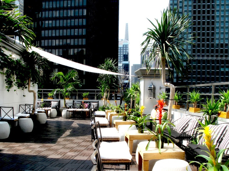 AVA Lounge 210 West 55th Street NYC Rooftop Of DREAM