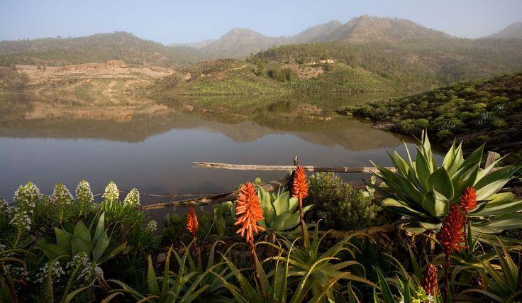 Parque Natural de #Pilancones, #GranCanaria #IslasCanarias