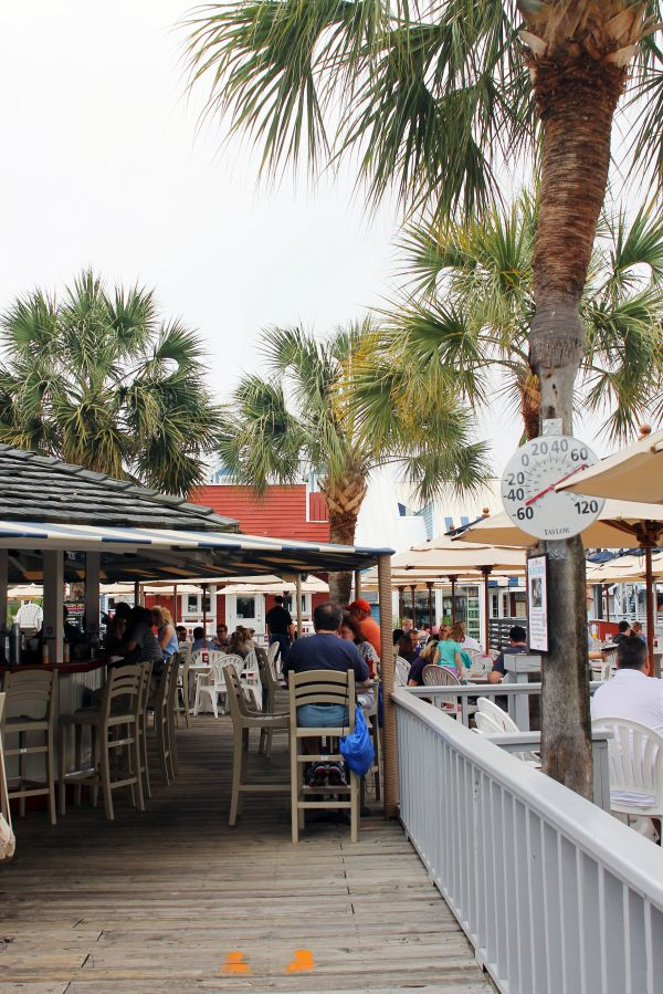 Salty Dog Cafe -- Must do while in Hilton Head!
