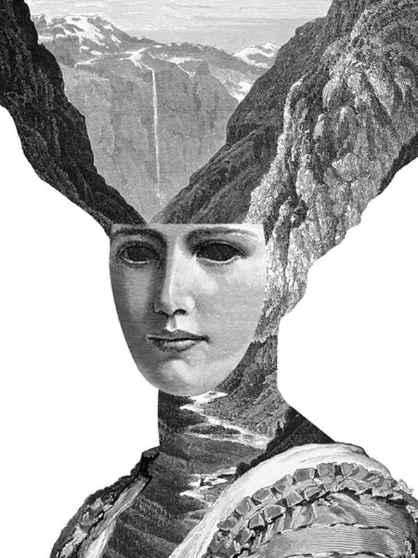 "Dan Hillier ""Feather and Claw"" Series 