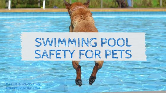19 Best Pool Safety Infographics Images On Pinterest