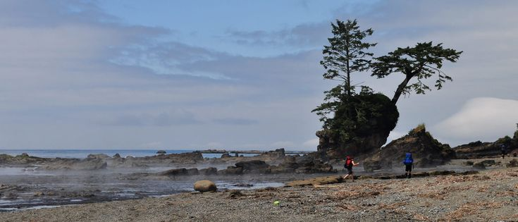 The Best Hikes and Treks on Vancouver Island | West Adventures