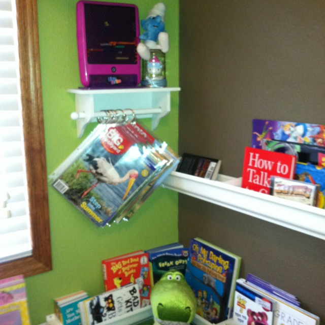 Magazine holders and rain guttering bookshelves