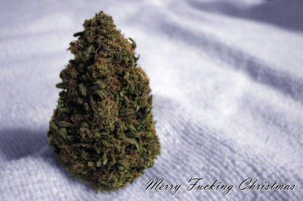 18 Felicitaciones de Navidad Creativas y Divertidas - Felicitaciones de quienes se lo fuman todo en Navidad