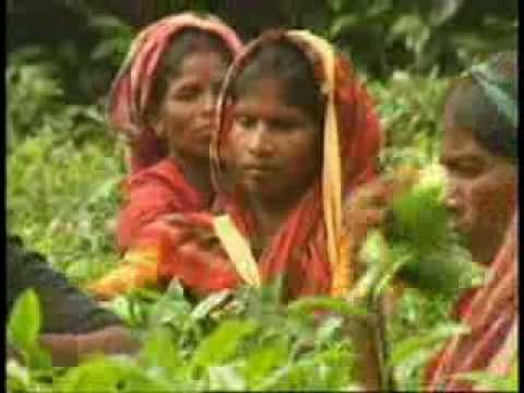 Aami Banglai Gaan Gai - Mahmuduzzaman Babu - Music Video