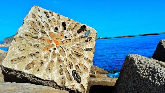 A Little Bit of Stone With Your Shoes by Donovan DiFiore