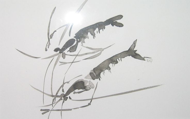 """Prawns"" - ink (chinese brushstrokes)"