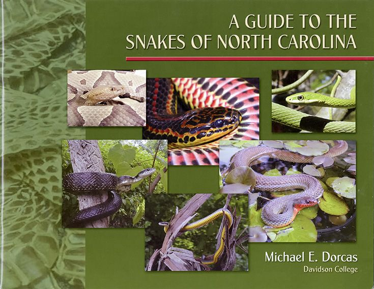 "A Guide to the Snakes of North Carolina by Michael E. Dorcas, Davidson College. 11""x8½"" booklet covers thirty-seven species of snakes. $7.95"