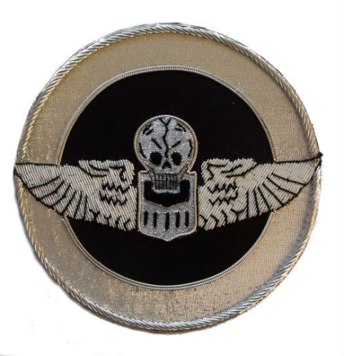 "341st Bomb Group   Nicknamed the ""Burma Bridge Busters.  They were part of the US 10th Air Force and operated in the China, Burma, India theaters of WW2.  The group were equipped with B25 Mitchell bombers."
