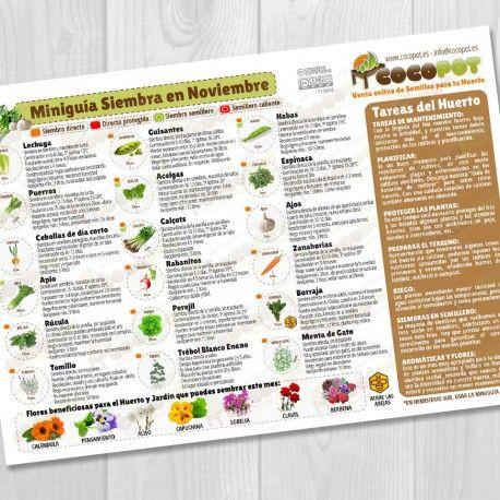 Nueva Miniguía de Siembra en Noviembre, actualizada, con las tareas del huerto y también para siembra de semillas de flores. Como siempre GRATIS para descargar en nuestra tienda online, o si lo prefieres te la enviamos impresa por solo 0,75€. ¡Esperamos que os guste y que la disfrutéis en vuestros huertos! #Huerto, #Semillas, #ecología, #jardin