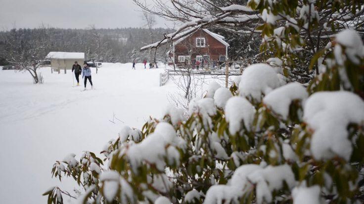 Notchview Nordic Skiing