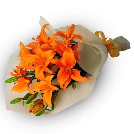 #localfloristsinjalandhar #onlineflowerdeliveryinpunjab  #sendflowersinindia #senflowerstopunjabonlinepunjab  #buyflowersonlineindia #floristsshopsonlineinjalandhar              To Buy This Product :  http://www.indiacakesnflowers.com/product/5-orange-lilies-bunch/      Cont : +91 - 9216850252               You can e-mail us at: info@indiacakesnflowers.com