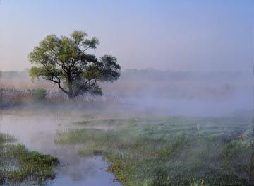 Narwiański National Park