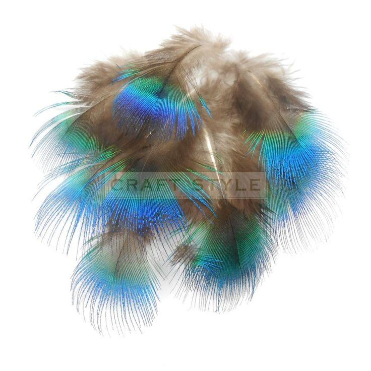 Paw pióra puchowe pawia NIEBIESKIE 3-6cm  (10szt)