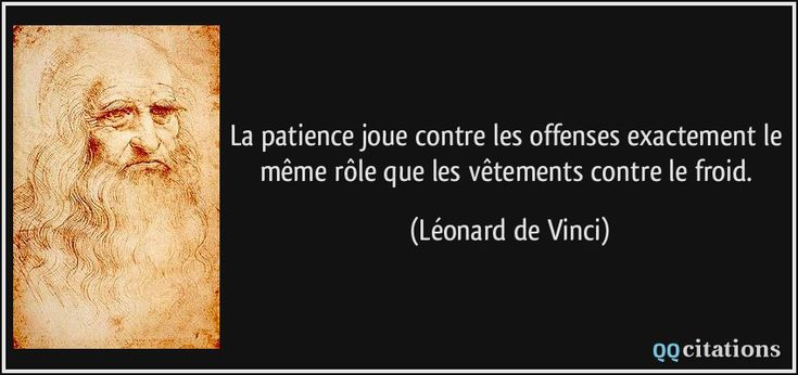 La patience joue contre les offenses exactement le même rôle que les vêtements contre le froid. - Léonard de Vinci