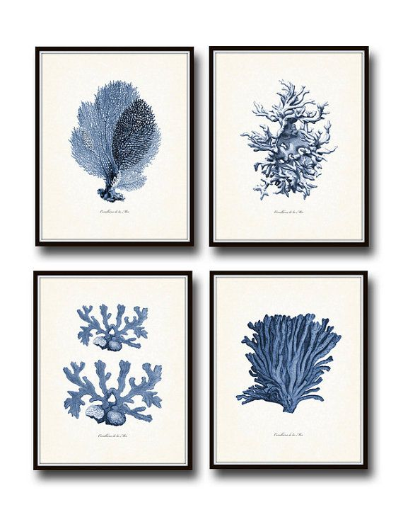 Coralliens de la Mer - Fine Art Giclee Print Set No. 2  Corals of the Sea in French.....  This set features 4 sea coral illustrations which have been been digitally enhanced and colored then added to a light neutral background which adds to their vintage charm.  ***Frames are for display purposes and are not included.  SIZES ----------------------------- Available sizes & prices are displayed in the drop down menu BACKGROUNDS ------------------------------- A picture of the background use...