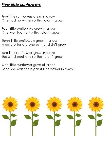 Mathematics song booklet - A handy booklet full of maths related songs.