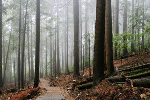 Enjoy the Grouse Grind and prevent common hiking injuries