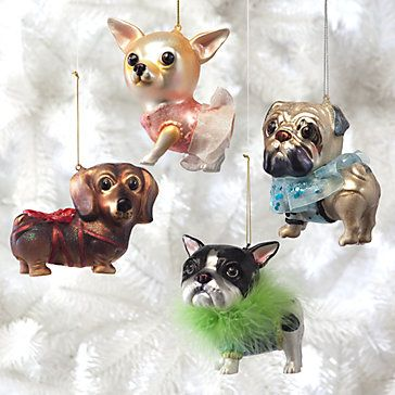 Our delightful Glass Dog ornaments are wonderful  additions to your tree. Painted to perfection and dressed to the nines, choose the Pug, Dachshund, Boston Terrier, or Chihuahua. Each comes in its own Silver gift box. Sold separately at zgallerie.com, $18 !!