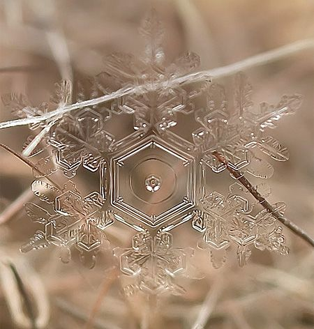 Beautiful photos of real snowflakes captured using macro lens by Russian photographer Andrey Osokin. Wow! Open the link so you can see the beautiful awesome variety! Praise be to God!