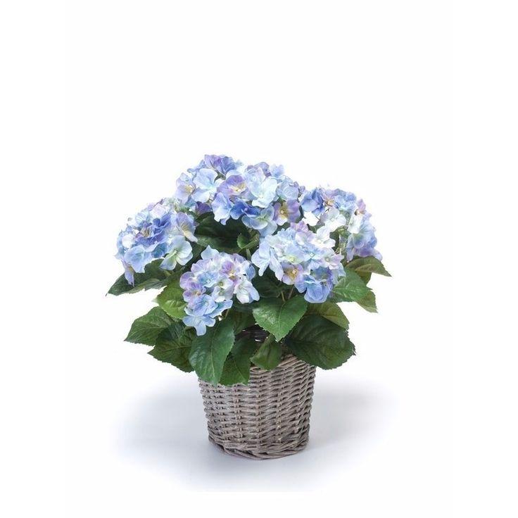 Buiten kunstplant blauwe Hortensia 45 cm  Kunstplant blauwe Hortensia in mand 45 cm. Een blauwe Hortensia kunstplant in een mandje. De plant is ongeveer 45 cm groot en wordt geleverd inclusief mandje. Hoogte mand: ongeveer 20 cm. Hoogte plant: ongeveer 45 cm.  EUR 39.95  Meer informatie