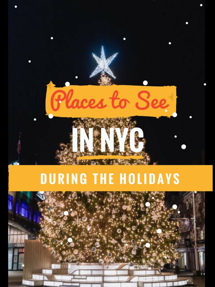 Christmas is the best time in New York because of all the lights and decorations. There are numerous places to visit in New York City during the holidays that make you feel that you can't cel…