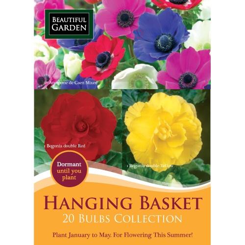 Hanging Basket 20 Bulbs Collection | Poundland