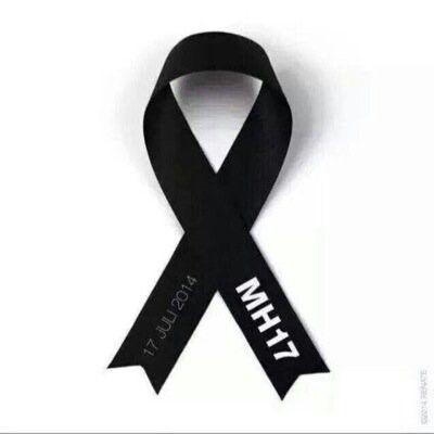 MH17....