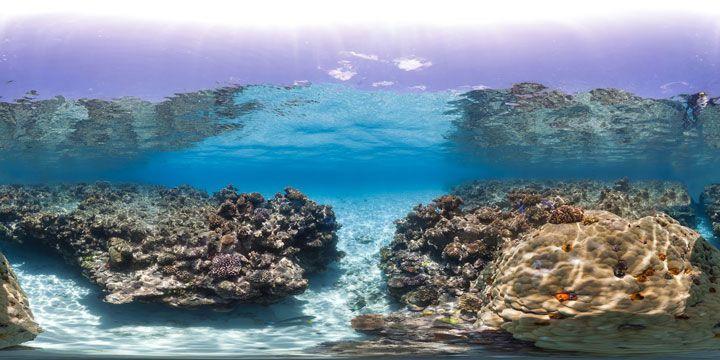 Pour sauver les récifs coralliens, des scientifiques réalisent de magnifiques panoramas sous-marins
