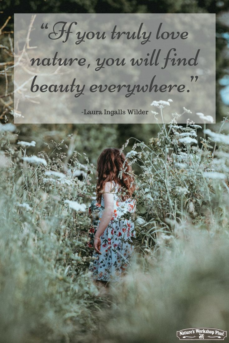 If You Truly Love Nature You Will Find Beauty Everywhere Laura Ingalls Wilder Homeschool Science Science Kits Find Beauty
