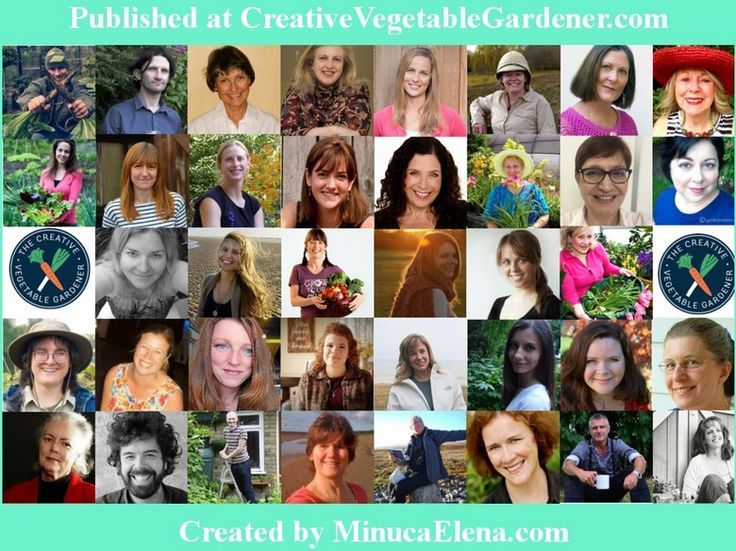 39 Garden Bloggers Share Their Biggest Mistakes