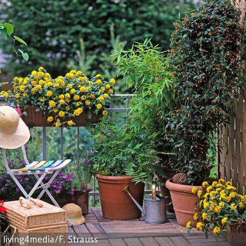 """Über 1.000 Ideen zu """"Windschutz Balkon auf Pinterest ..."""