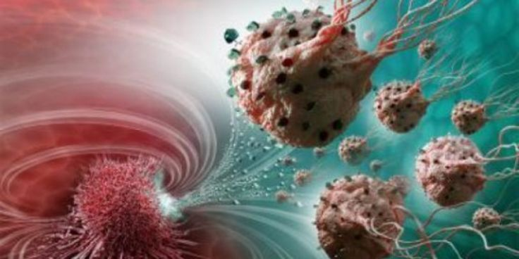 #Groundbreaking Nanorobots Target Cancerous Tumours With Unrivalled Precision - Huffington Post UK: Gephardt Daily Groundbreaking…