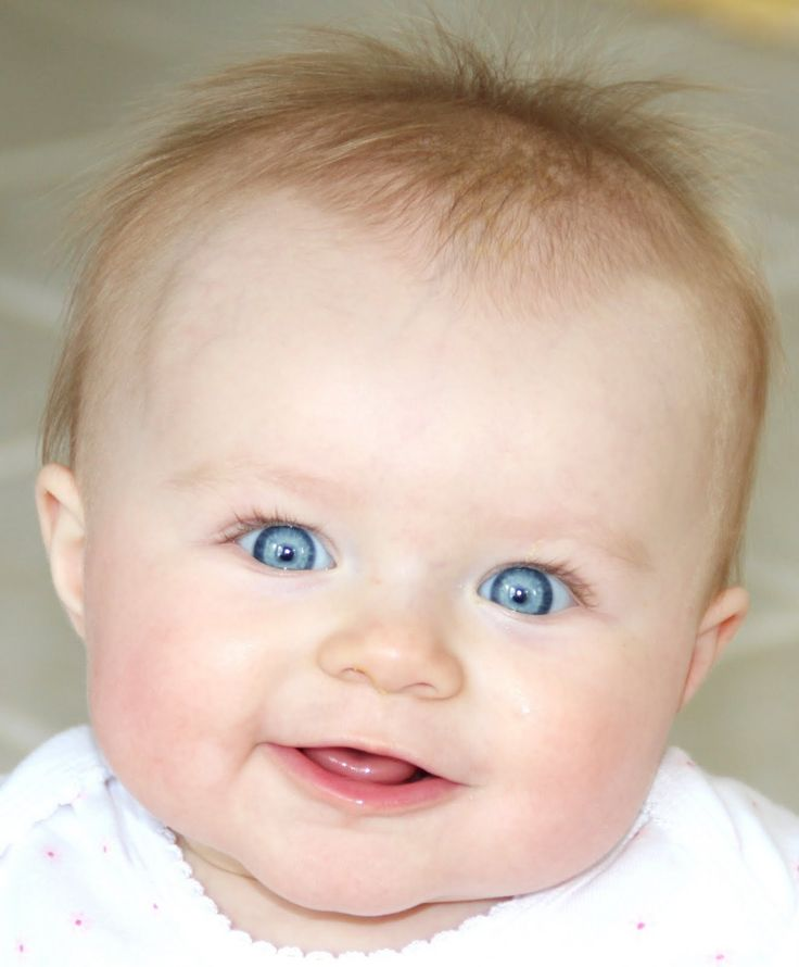 Big blue eyes...love affection and enjoy to show theirs...