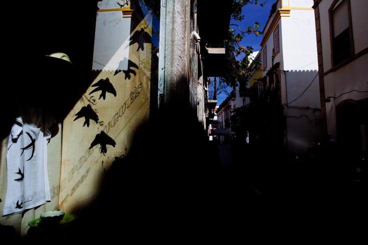 """Há anos que ingleses, suíços, franceses pousam aqui porque querem mudar de vida. A cidade majestosa e a serra à sua volta são hipnóticas. Agora, a ameaça chamada """"petróleo e gás de xisto"""" pode transformar Tavira num paraíso perdido."""