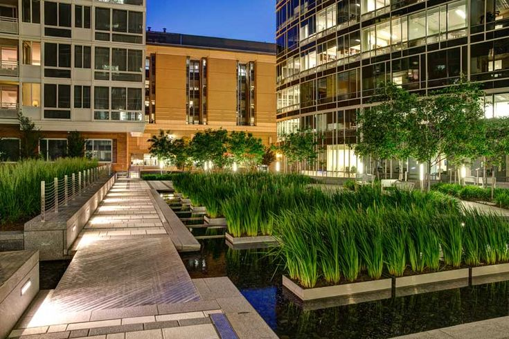 The avenue sasaki associates inc commercial design for Courtyard landscaping ottawa