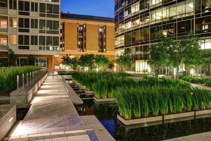 The avenue sasaki associates inc commercial design for Courtyard landscaping ottawa