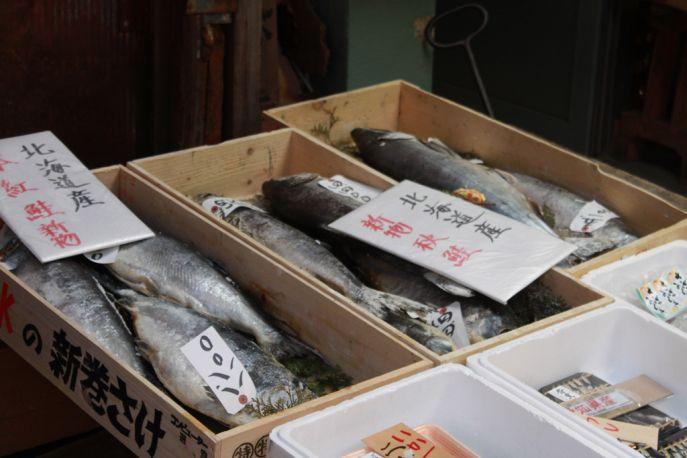 Fish for sale at Tokyo's Tsukiji Fish Market