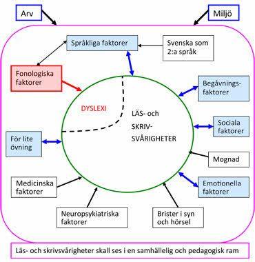 faktorer som beskriver läs- och skrivsvårigheter/dyslexi