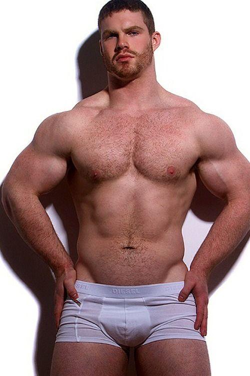 Hot muscle hunk gay