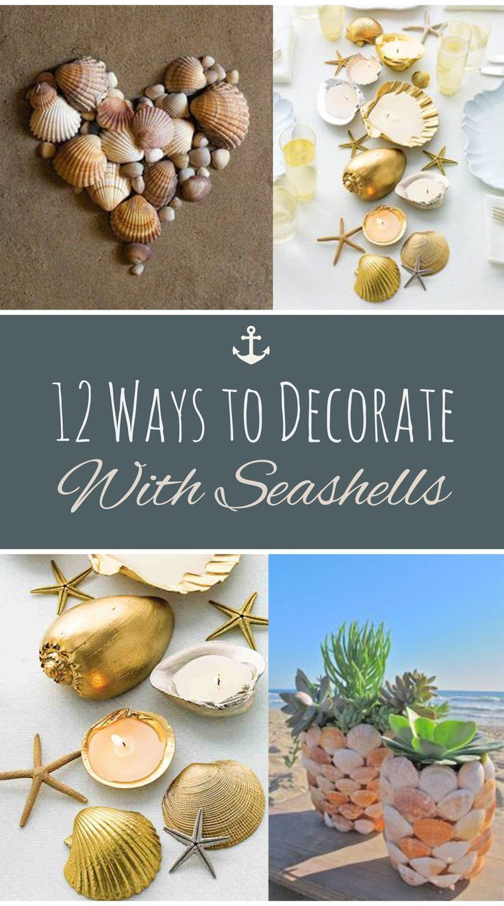 75 best crafty images on pinterest shells ornaments and for Seashell ornaments diy