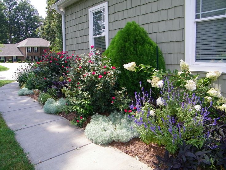 Secret Garden: Hydrangea & Landscape Roses