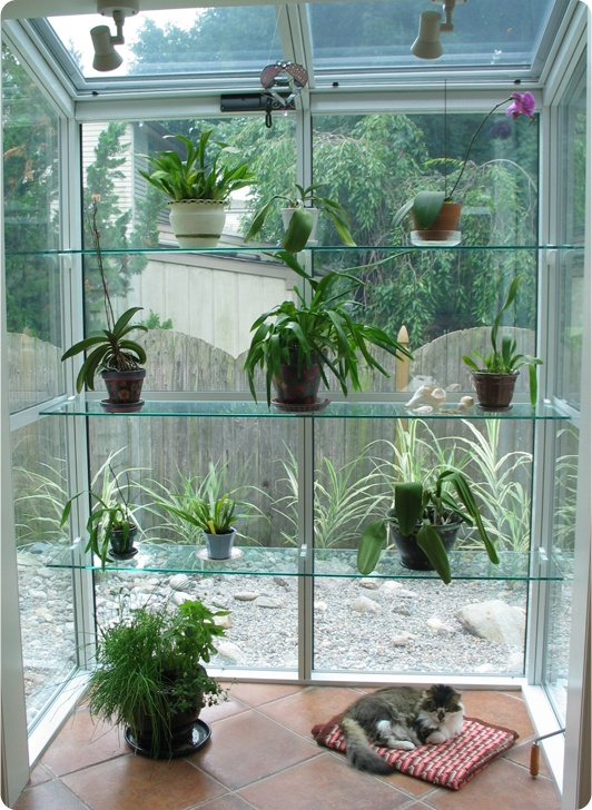 10 Best Images About Plant Shelves On Pinterest The