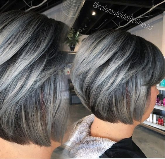 Formula Dimensional Silver Gray Hair Highlights