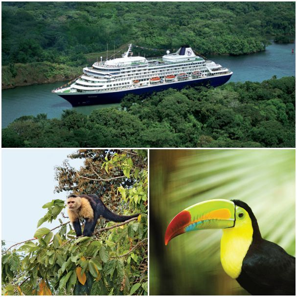 The Panama Canal is a lush gateway lined with emerald-hued flora and an abundance of colorful fauna. Standing on deck as you traverse the canal is sensory overload, with beautiful sites around every corner.