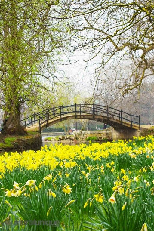 Pont Romantique (Oxford, Angleterre) 6' x 9' (1,83m x 2,75m)