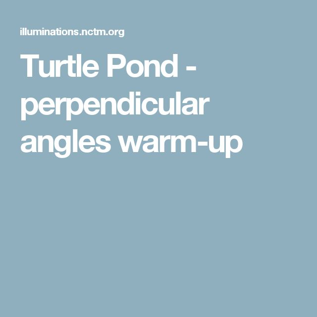Turtle Pond - perpendicular angles warm-up