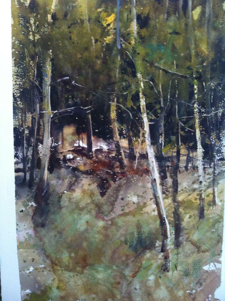 Alvaro Castagnet, trees in Scotland | Alvaro Castagnet ...